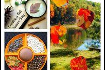 Fall Ideas / by Kate Jones