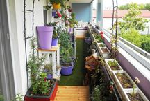 Green balcony / Green balcony in a small town...