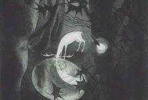 ¶Nocturne