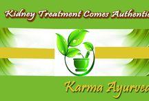 Ayurvedic kidney treatment - Karma Ayurveda