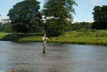 The Sporting Estate / Fishing and Shooting!  / by Floors Castle