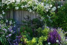 Garden ideas for back that I love!!!