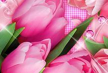 bloemen / mooie plaatjes van bloemen