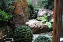 坪庭・日本庭園 Japanese garden