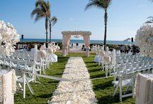wedding / by Samantha Harvey