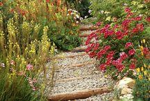garden: paths & borders