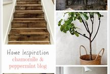 Chamomile and Peppermint Blog - Posts