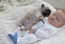 Puppy Pick Me Ups / Puppies..Cause you know you will feel all warm inside after aww..ing over these adorable baby dogs!