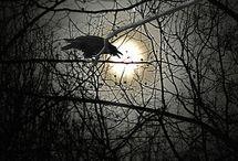 darkthing