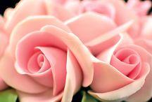 só de rosas de pasta americana