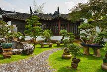 japonské zahrady