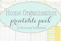 Home binder - Bullet journal