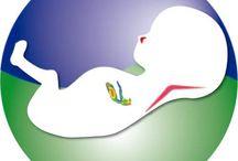 UNIFET / Unidad de Diagnostico Materno y Fetal
