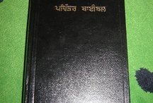 Punjabi /Indian Bibles