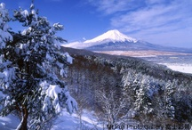 Winter season in Japan / Let's Pin It together! You'll collect favorite winter season in Japan. Please add to this board about winter season in Japan. No spam, No nudity, No advertising! If you would like to be added to this group, please send me an email with your pinterest profile link at : pinterest@mutojapan.com. Happy Pinning!