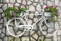 bisiklet ve çiçekleri