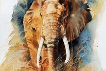 Africa paint inspiration
