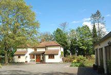 PROPERTY IN SUFFOLK / Property for Sale by Rural Scene in Suffolk