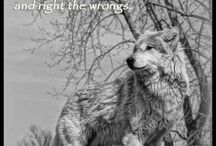 Speak up for the Wolves <3