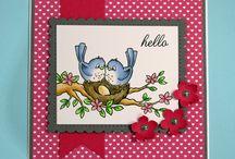 My Wild Rose Studio Cards