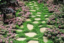 Feng Shui gardens
