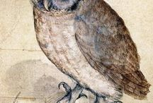 "ZOOLOGY - OWLS (r*) / "" That Wise Old Owl ""   A wise old owl sat on an oak. The more he saw, the less he spoke. The less he spoke , the more he heard. Why can't we be like that wise old bird ?"