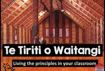 Tikanga a Iwi - Te Tiriti o Waitangi