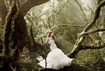 ~~ Fairytale ~~