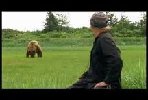 Grizzly Man - Timothy Treadwell