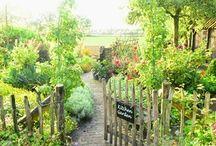 orti giardino