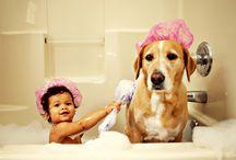 PawSpa / Make washing your pet an enjoyable experience with the Oxygenics PawSpa Pet Washers!