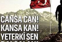 Türkiyem ❤