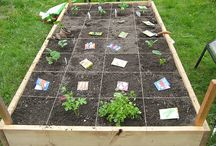 Gardening / Square foot