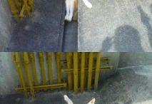 (Funny | Cute ) Animals