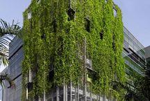Green facade