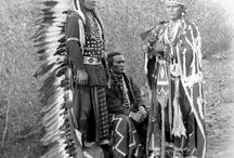 I owned a Foul. That was the last colt.That was the last. Of the Blood Line. Of Chief  Joseph.