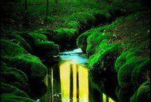 Slunce v potoku