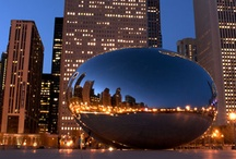 Chicago, Chicago / by Julie Bug
