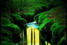 Nature / Waterfalls | Trees | Outside