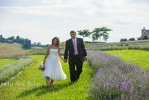 Lavender Farm Events