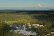 evergreen state college! / by Logan Horn