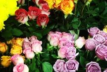 Flower Love / by Sara Deppenbrook