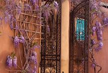 Heavenly Doorways ! / by Nina Graeme