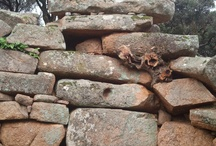 Tombe di Giganti a Filari