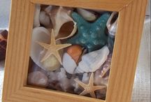 sea shell decoration