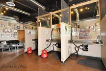 Kutyakozmetika grooming salon