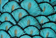 Tendance : trompe l'oeil / Laissez-vous surprendre par les apparences ! Parquets de moquette ou sols textile marbrés, Balsan réinterprète les surfaces existantes pour apporter de nouvelles sensations. Sol, peau, vêtements… toutes les textures sont décryptées afin de constituer des sols textiles caméléons qui jouent sur les apparences.