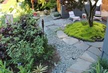 Yard landscapes