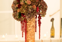 What to do with all these corks! / by Debbi Stroback