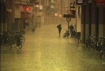 Regn / by Betina Steenfat
